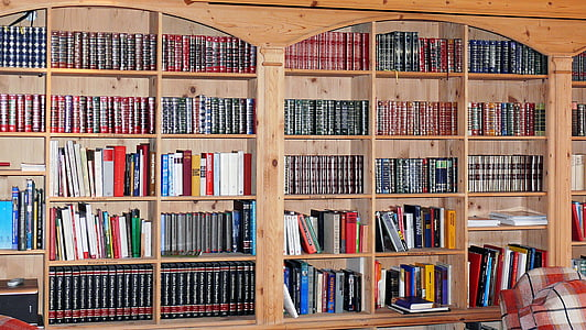 book shelves, book wall, bookcase, books, library, room, book