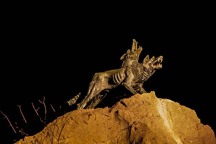 night, wolves, pair, dark