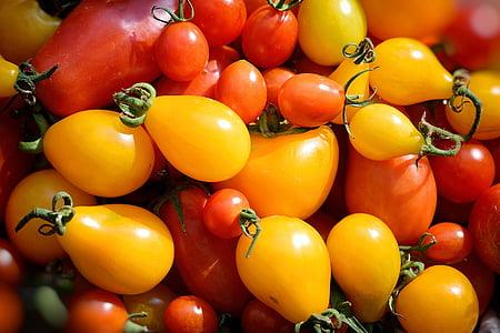 kollane tomat, taust, tapeet, tomatid, punane, kollane, Aed