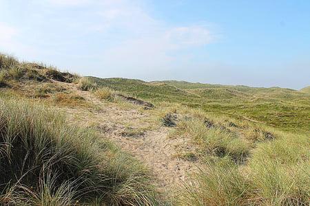 dunes, danish, denmark, summer, sol, natural, holiday
