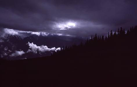 nuotrauka, siluetas, medžiai, Audra, Debesuota su pragiedruliais, audros debesis, Stulbinantis dangus