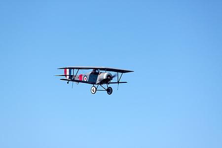 biplà, avió, vol, aeronaus, volar, pilot, l'aviació
