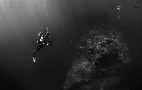 Аквалангіст, дайвер, Дайвінг, підводний, води, море, океан