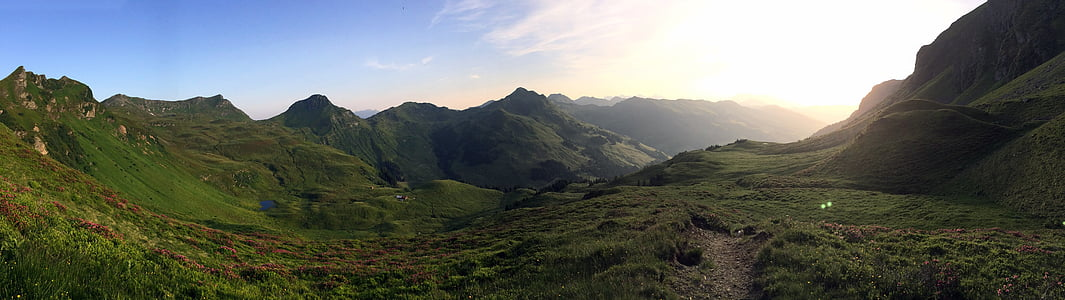 summer, mountains, alm, meadow, saalbach, mountain, nature