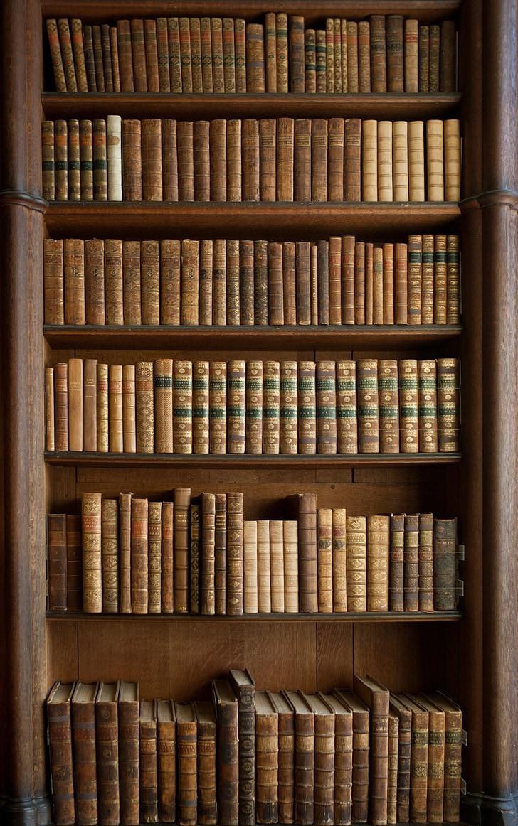 grāmatas, grāmatu skapis, vecas grāmatas, vēsturisko, antīks, felbrigg zāle, Norfolk