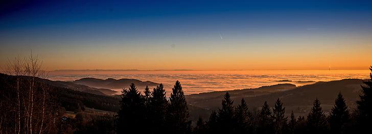 日落, 雾, 心情