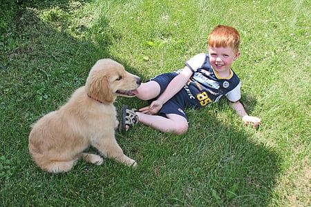 cadell, noi, gos, valent, l'amor, nen, somriure