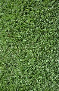 tráva, textúra, pozadie, zelená tráva