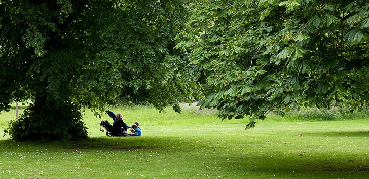 picnic, mother, children, park, mature trees, grass, woodland