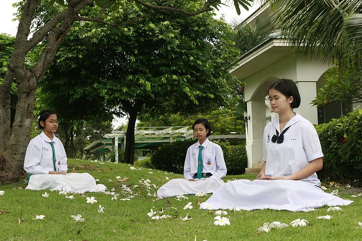 Mädchen, Buddhismus, Meditation, Schneider Sitz, buddhistische, meditieren, Wat