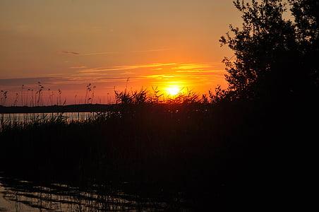 일몰, plauer 호수에, abendstimmung, 태양, 조 경, 구름
