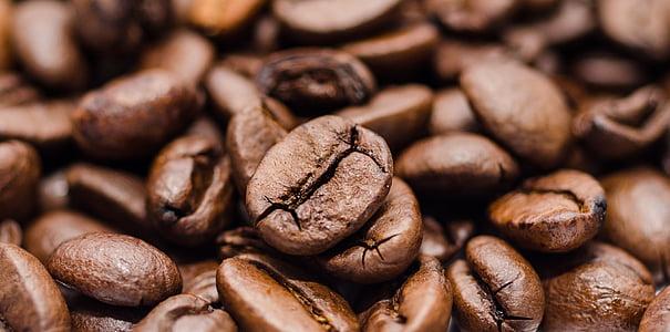 καφέ, φασόλια, κινηματογράφηση σε πρώτο πλάνο, φωτογραφία, κόκκοι καφέ, Φαγητό και ποτό, καφέ