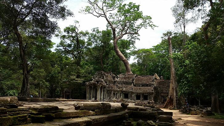 Камбоджа, храма, корени