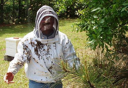 abelles, apicultor, l'agricultura, colomar, mel