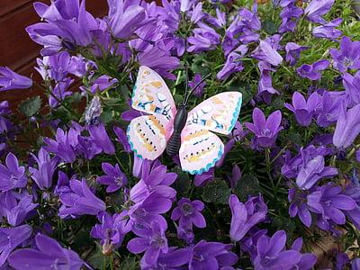leptir, kukac, Javna rekord, cvijeće, ljubičasta, ljeto, priroda