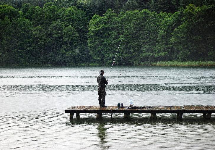 คนตกปลา, ฝน, ล่าสัตว์, ตกปลา, จับ, โปแลนด์, น้ำ