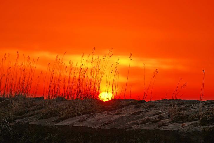 sol, arrebol, Morgenrot, nascer do sol, pôr do sol, abendstimmung, vermelho brilhante
