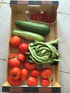 vegetals, collita, Gerd, tomàquets, jardí, Bio, aliments