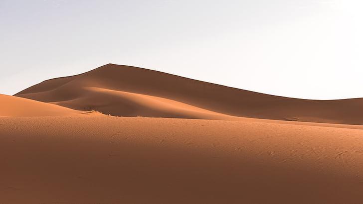puščava, Dune, krajine, pesek, peščene sipine