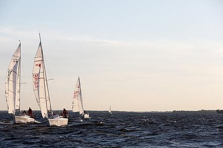 three, white, sailboats, clear, sky, ocean, sea