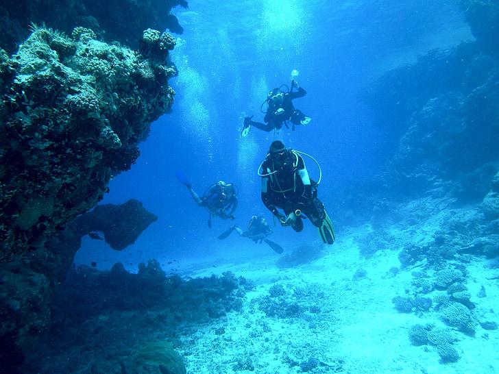 nardymas, po vandeniu, jūra, plūdė, kvėpavimo aparatai, narai, Povandeninis pasaulis