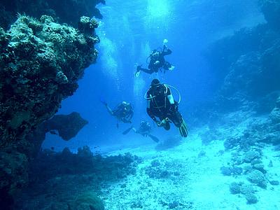 Submarinisme, sota l'aigua, Mar, carrossa, aparells de respiració, submarinistes, món submarí
