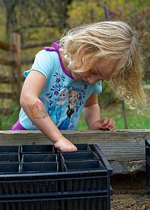 Acorn istutamine, lapse, Acorn, taim, loodus, Tüdruk, lõbus