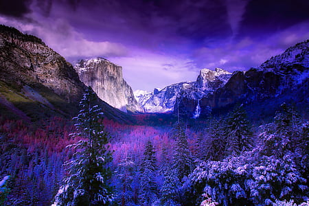 yosemite, national park, california, mountains, snow, winter, forest