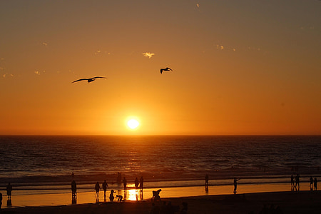sunset, beach, sea, ocean, california, usa
