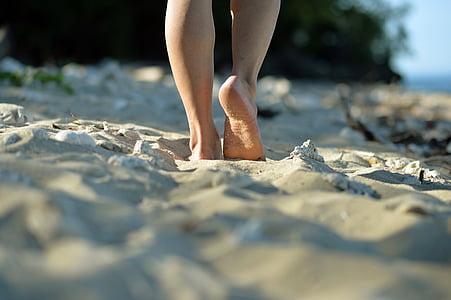 platja, Mar, natura, viatges, riba, complex, vacances