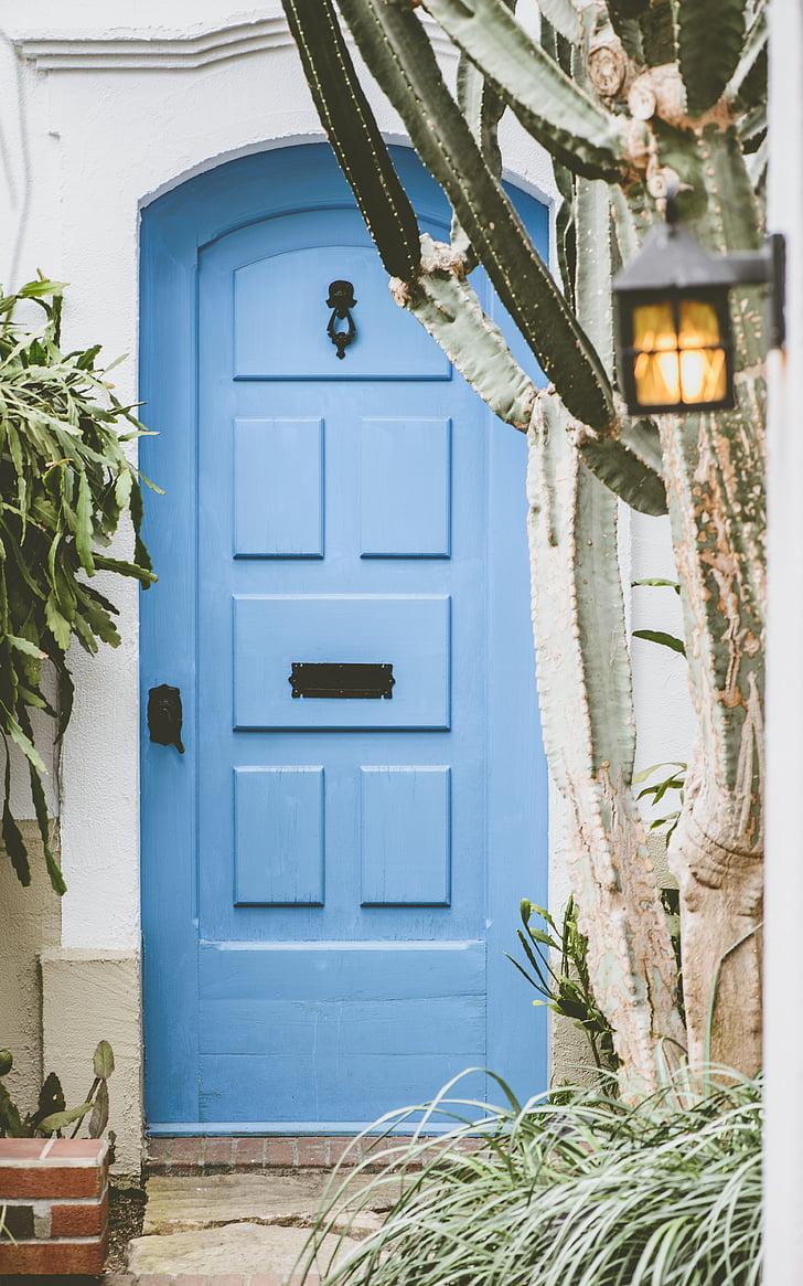 dům, mimo, modrá, dveře, kaktus, zelená, rostliny