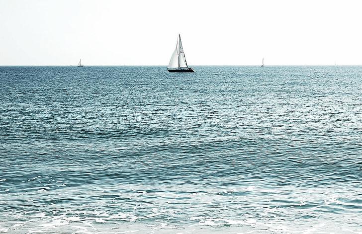 Mar, oceà, veler, natura, vela, vaixell, l'estiu