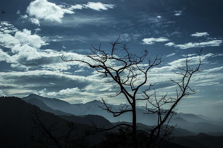 nuvens, nublado, montanhas, natureza, céu, árvore, montanha