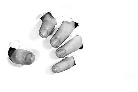 セクター, 指, 怒り, 分離, 除く, 手, rip