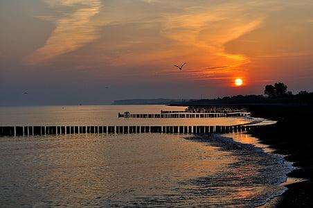 Alba, platja, l'estiu, Mar Bàltic, sorra, llum de matí, Costa
