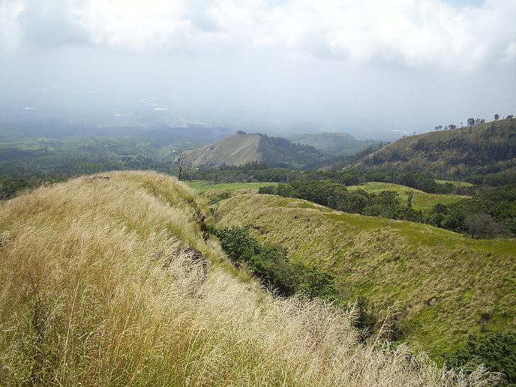arjuno Góra, łąka, Indonezyjski, Natura, góry, wzgórze, krajobraz