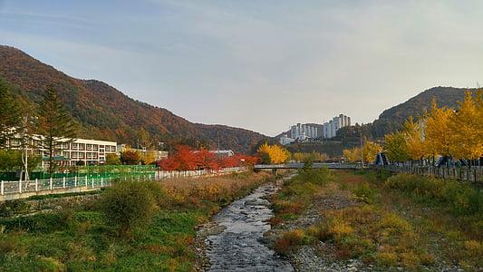autumn, landscape, autumn leaves, rivers