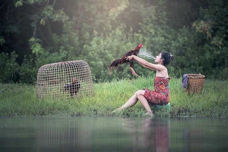 женщина, Река, Ванна, Животные, Азия, Бангкок, Клюв