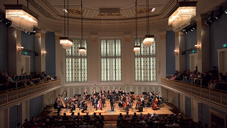 concert, concert hall, chamber orchestra, vienna, large group of people, architecture, people