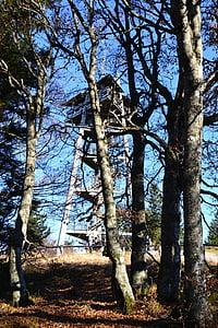 rừng đen, Freiburg, Schauinsland tower, tháp, địa danh Schauinsland, cây, rừng