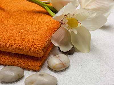 wellness, massage, relax, relaxing, spa, relaxation, physiotherapy