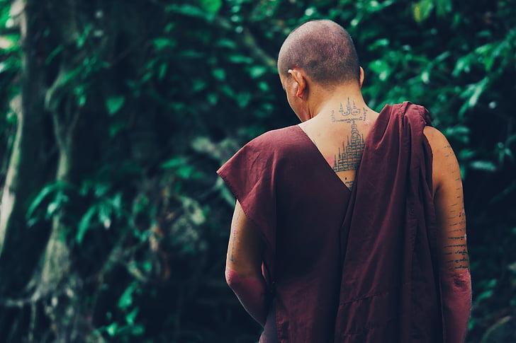 monjos, tatuatge, esquena, planta, arbre, fulles, natura