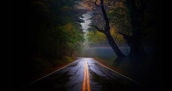 carretera, buit, estèril, tranquil, rural, país, paisatge