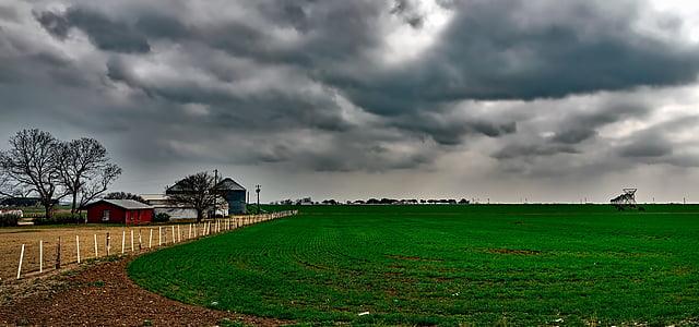 texas, farm, ranch, field, crop, agriculture, panorama