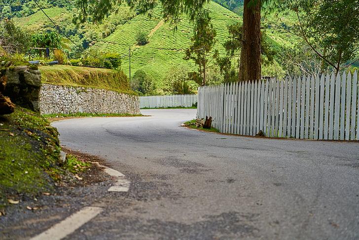 drogi, płot, asfaltu, Natura, obszarów wiejskich, krajobraz, ogród
