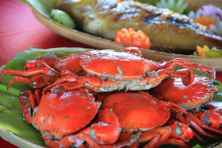 krabber, sjømat, sjøen, Palawan, frisk, mat