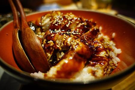 sushi, Japan, Japan rätter, Gourmet, restaurang, ål ris