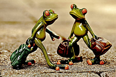 frogs, vintage, funny, travel, luggage, holdall, go away