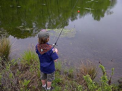 fishing, outdoors, young, fisherman, nature, water, fish