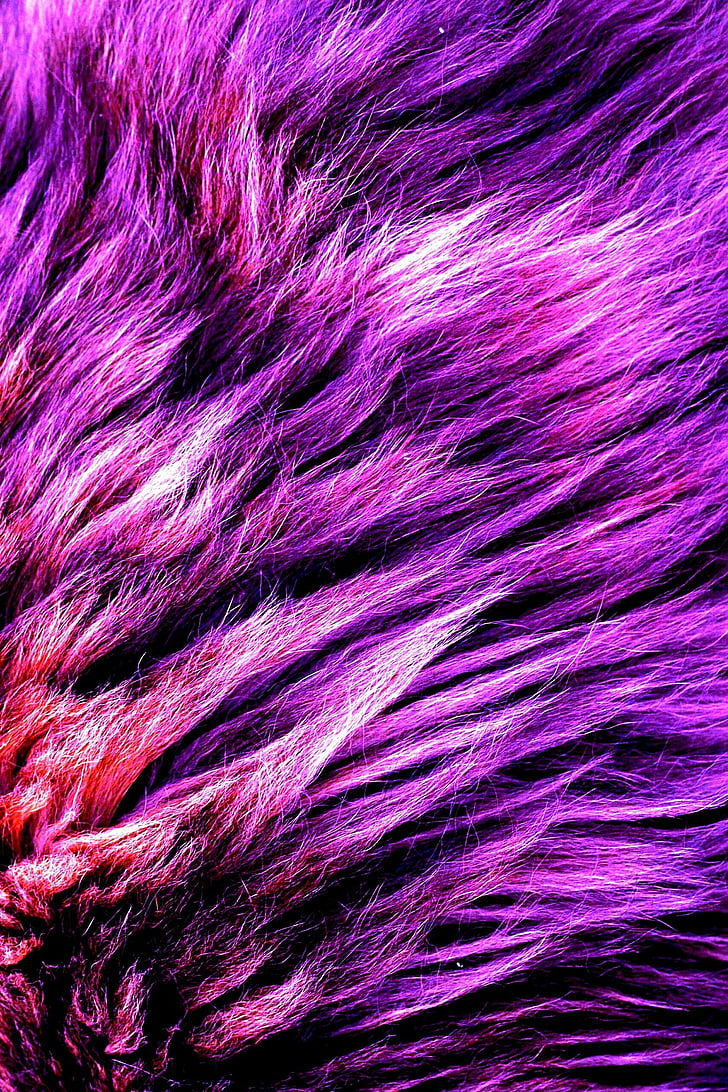 foux, fur, purple, material, fashion, full frame, backgrounds